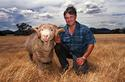 Merino grazier Robert Thompson with his superfine Ram