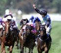 Brew gallops to victory in Australia's  The Melbourne Cup.